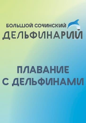 Плавание с дельфинами logo