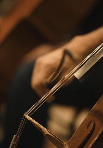 Вечер виолончельной музыки. С.Словачевский logo