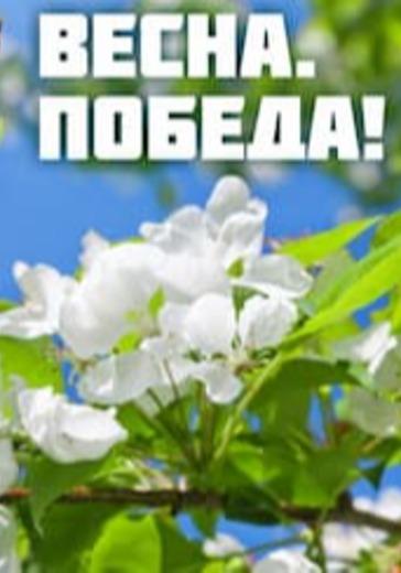 Праздничный концерт «Весна победы нашей» logo