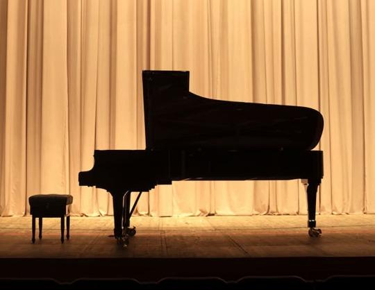 Владлен Петров (фортепиано)