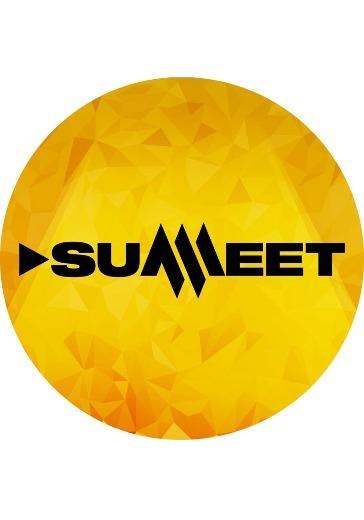 Summeet. Night logo