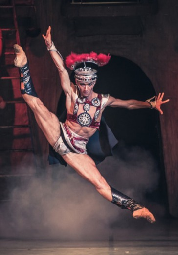 Спартак. Государственный академический театр классического балета Н. Касаткиной и В. Василёва logo