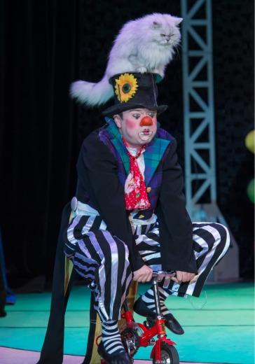 Я - клоун или Котостройка logo