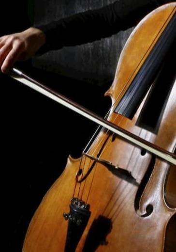 Творческая молодёжь Московской консерватории. Татьяна Боярина logo