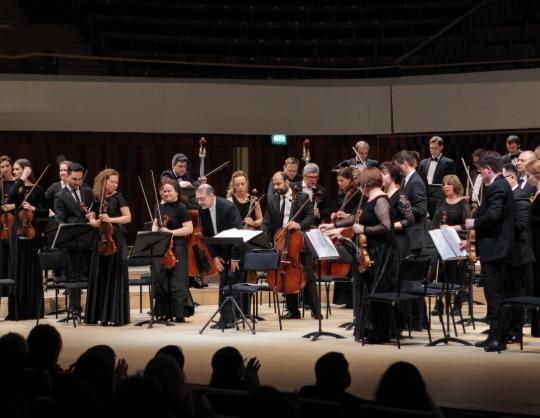 Оркестр Musica viva, Дмитрий Синьковский (скрипка)