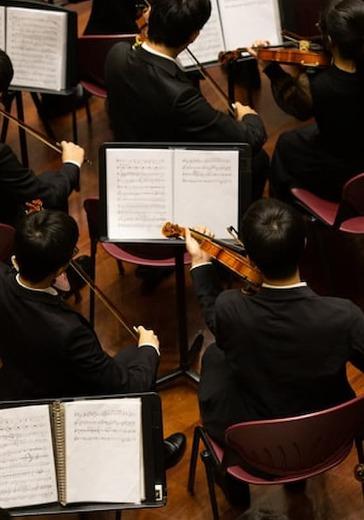 Сочинский симфонический оркестр logo