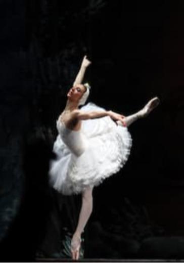 Балетная рапсодия. Гала-концерт солистов балета logo