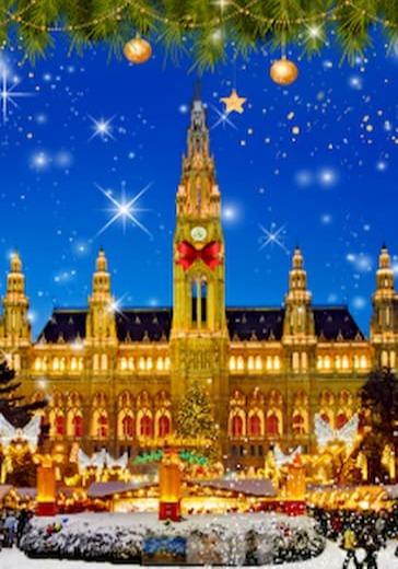 «Новый год в Вене» logo
