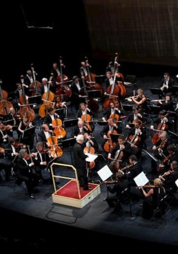 Молодежный камерный оркестр Заслуженного коллектива России. Ярослав Забояркин  logo