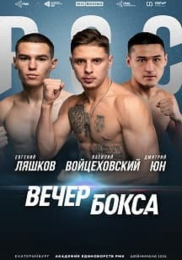 Вечер профессионального бокса logo