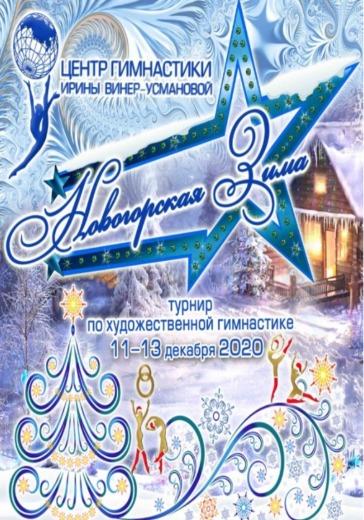 Новогорская зима-2020 logo