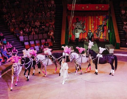 Нескучный цирк Клоунов и Кукол