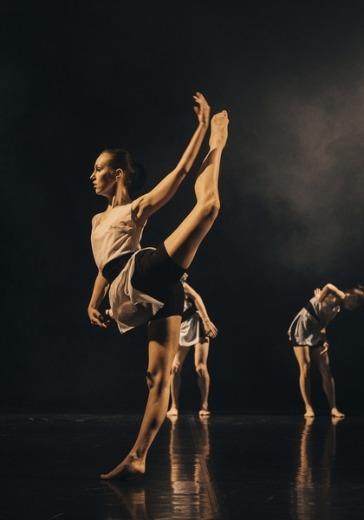 Вечер современной хореографии logo