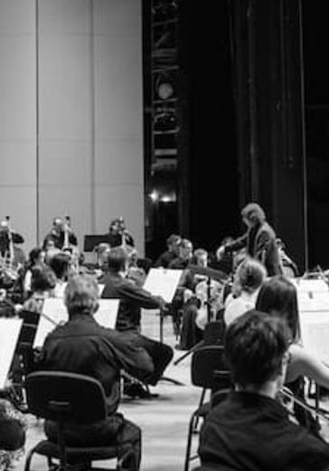 Государственный симфонический оркестр «Новая Россия».  Арабелла Штайнбахер logo