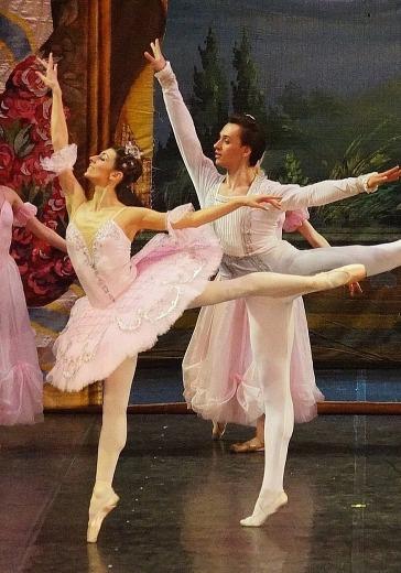 Шедевры мирового балета logo