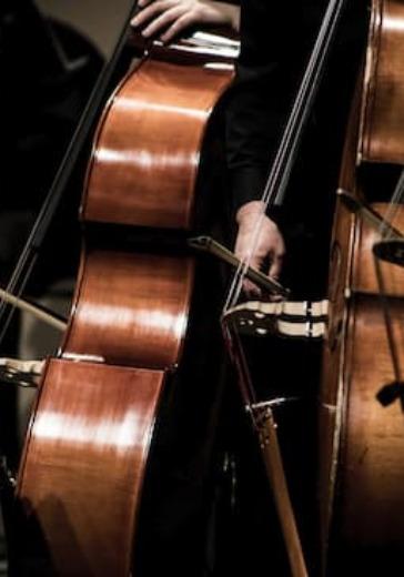 Разговор в басовом ключе. Фестиваль «Национальная коллекция» logo