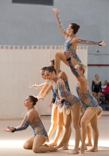 Чемпионат Европы по эстетической гимнастике logo