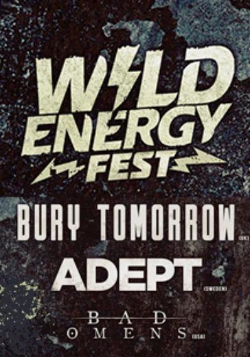 Wild Energy Fest logo