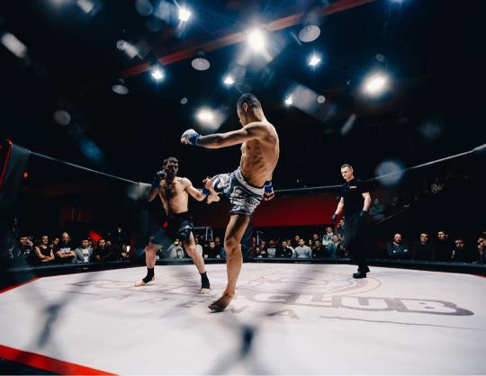 Вечер профессиональных боев MMA UFL
