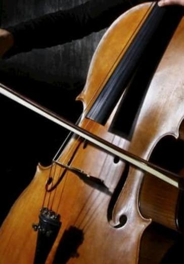 Вечер музыки для виолончели logo