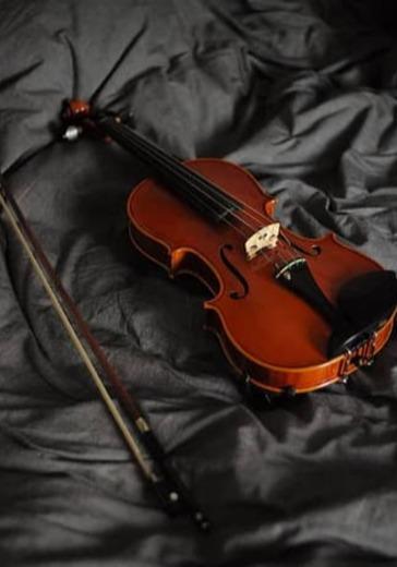 Марина Шиганова (скрипка) logo