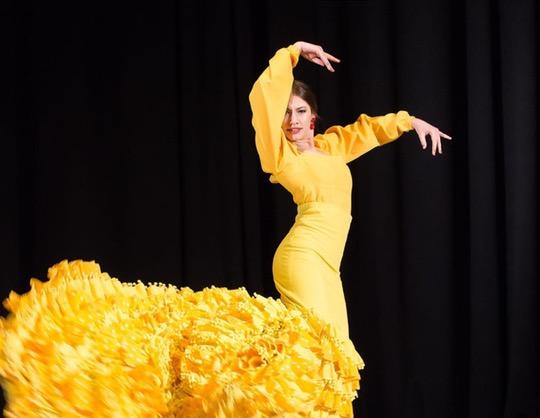 Flamenco Capriccios