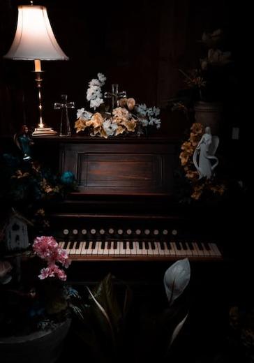 Вечера фортепианной музыки. Александр Романовский logo