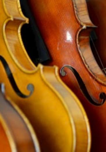 Вечер дуэтов для скрипки и альта logo