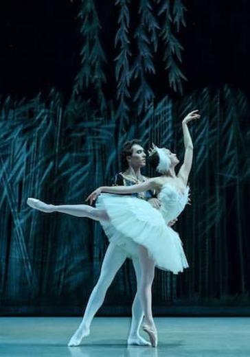 Лебединое озеро (Театр балета им. П. И. Чайковского) logo