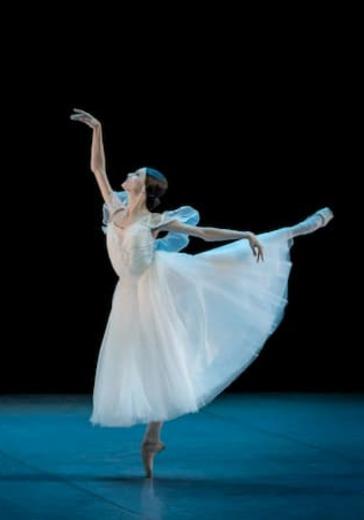 Гала-концерт звезд балета logo