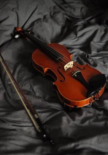 Вечер скрипичной музыки logo
